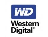 WESTERN DIGITAL LAPTOP HARD DRIVE 250GB W94DJ